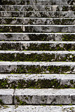 Old stairs covered in moss