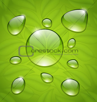 Water drops on fresh green leaves texture