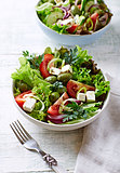 Mediterranean-Style Salad with Feta, Olives and Capers