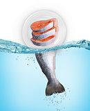 fresh fish concept