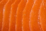 salmon meat texture