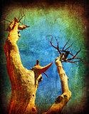 Dry grunge tree