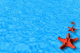 Water background with red starfish