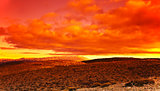 Dramatic red sunset at desert