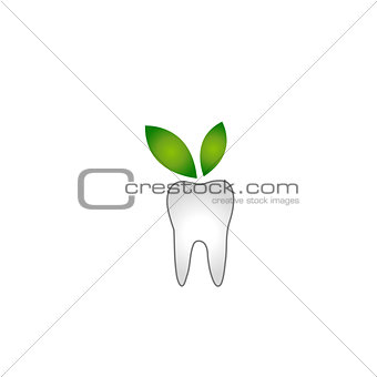 Tooth with green leaves