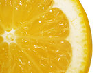 Slice lemon extreme close up