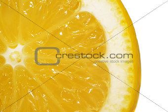 Slice lemon extreme close up