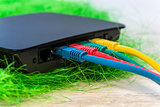 network switch with various color RJ45 cables connected for swit