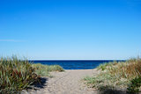 Pathway to the beach of Baltic Sea at the swedish island Oland