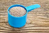 white chia seeds