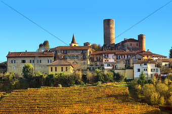 Small town and vineyards on the hill in Italy.