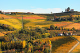 Vineyards on the hills in autumn in Italy.