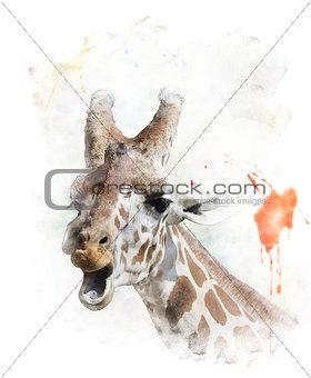 Watercolor Image Of Giraffe