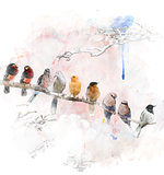 Watercolor Image Of Perching Birds
