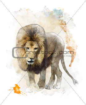 Watercolor Image Of  Walking Lion
