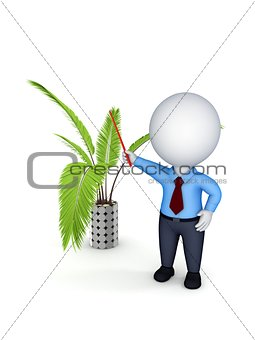 3d rendered decorative plant