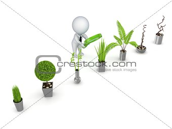3d rendered decorative plants