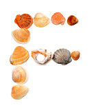 Letter F composed of seashells