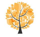 Beautiful Autumn Tree on a White Background Vector Illustration.