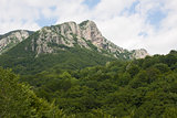 Frakto National Forest, Greece