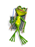 frog in a deckchair