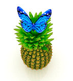 Blue butterflys on a pineapple