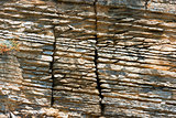Layered Sedimentary Rock - Liguria Italy