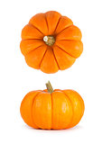 Mini Orange Pumpkins Isolated on White