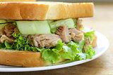 tuna sandwich with fresh cucumber and green salad