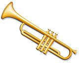 Trumpet. Brass wind musical instrument