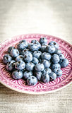 Fresh blueberries on the decorated plate