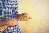 Farmer holding wheat ears
