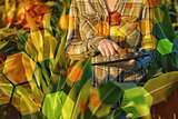 GMO science in corn field