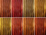 Long female hair as color samples