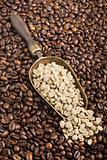 Composition with green and roasted coffee beans
