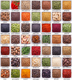large collection of different spices and herbs