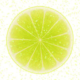 Slice of lime