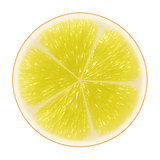 Yellow citrus slice