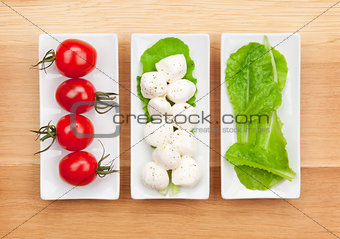 Tomatoes, mozzarella and green salad leaves