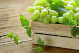ripe fresh sweet organic grapes in a wooden box