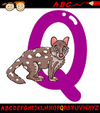 letter q for quoll cartoon illustration
