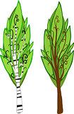 Cartoon Trees. Isolated