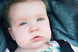 Close up of blue eyed baby looking at viewer