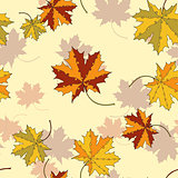 Maple leaf  seamless pattern