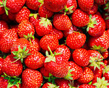 Strawberry. Strawberries. Organic Berries Background
