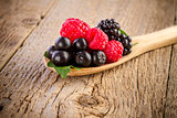 forest berries in wooden spoon on wooden table