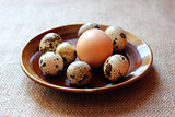 some eggs of the quail and one of the hen