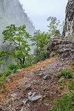 Tasnei Gorge, Romania