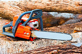 chainsaw closeup on a felled forest