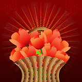 Basket of tulips on red background